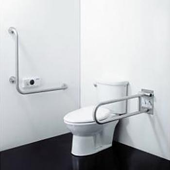 HCG 和成衛浴 無障礙空間專用馬桶 CS4384Adb-AF956F