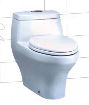 Claytan 環保省水單體馬桶 WC1622