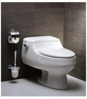 凱撒衛浴 省水單體馬桶 C1358